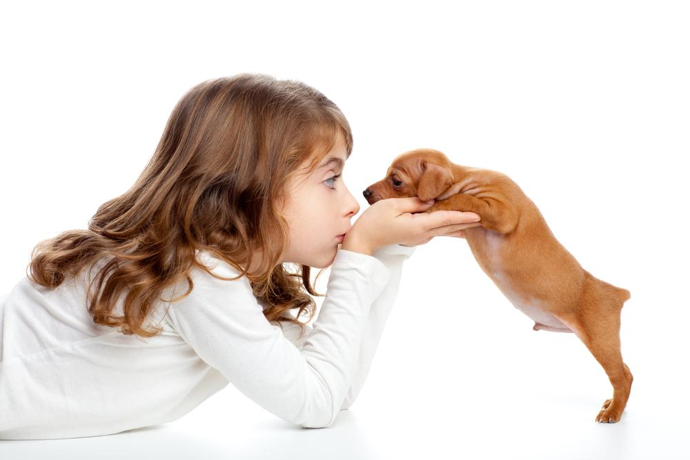 Nomi brevi per cani nomi per cani for Nomi per cani maschi piccoli